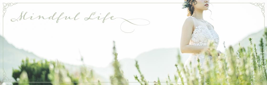 DESIGN -Web Banner-